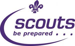 3rd Stoneleigh Scouts Logo