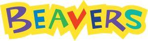 Stoneleigh Beaver Group Logo